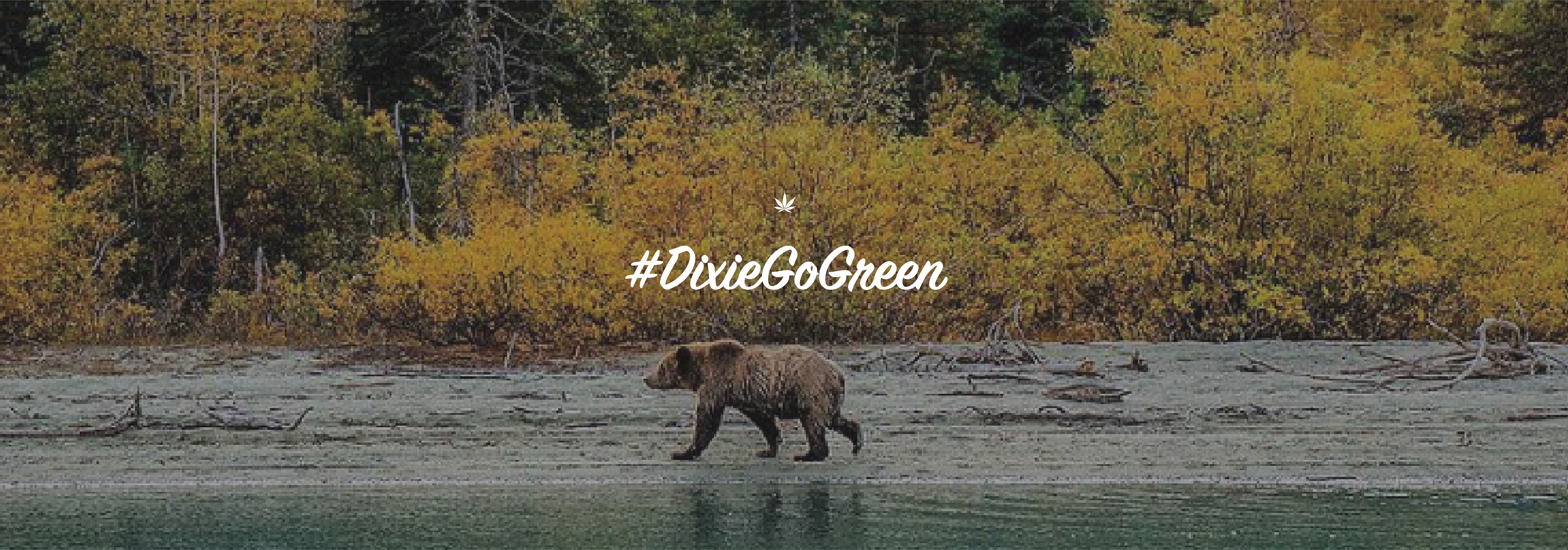 Dixie Go Green campaign for environmental sustainability